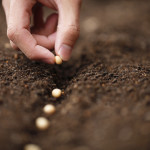Marriage Awakening - Reaping and Sowing